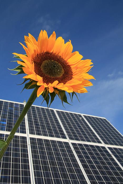 Umweltschutz durch Photovoltaik